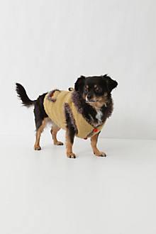 Tagalong Dog Sweater