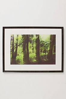 Green Deep, 2002