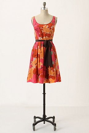 Changing Canopy Dress - Anthropologie.com from anthropologie.com