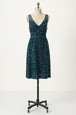 Matilija Burnout Dress - Anthropologie.com :  burnout sleeveless poppy teal