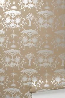 Whistling Thorn Wallpaper