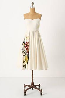 Summer Souffle Dress