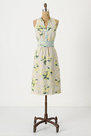 Dutch Yellow Shift - Anthropologie.com :  sky blue pastel sleeveless silk blend