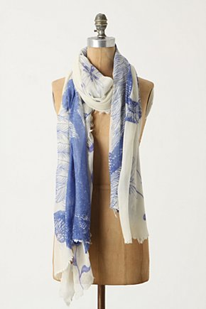 Ostrich Scarf - Anthropologie.com :  wool blue and white cashmere scarf
