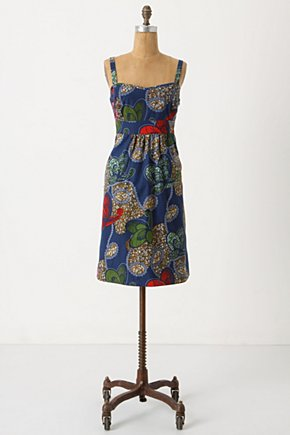 Ikinimba Dress Anthropologie com from anthropologie.com
