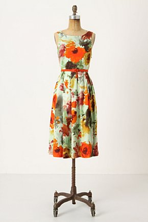 En Plein Air Dress - Anthropologie.com