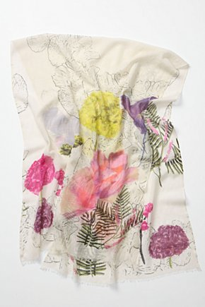 Botany Sketch Scarf - Anthropologie.com