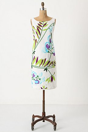 Sweetpea Shift - Anthropologie.com