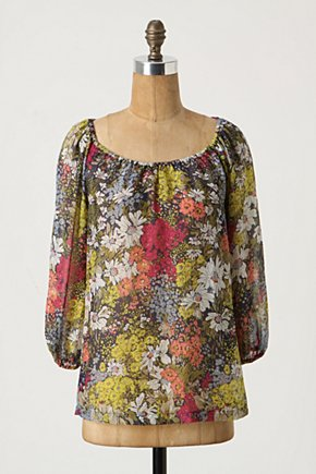 Cabomba Blouse - Anthropologie.com :  blouse peasant top sheer silk chiffon