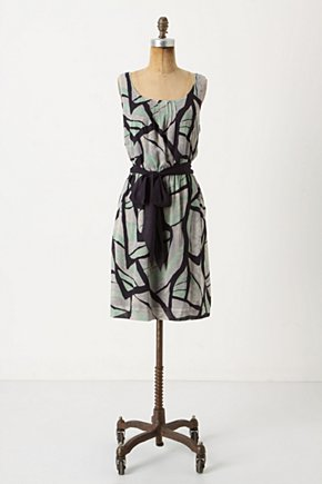 Damselfly Dress - Anthropologie.com :  silk sleeveless sash rayon
