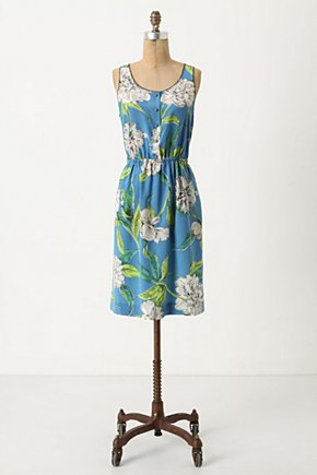 Calliope Dress - Anthropologie.com :  silk blue and floral summer dress sleeveless