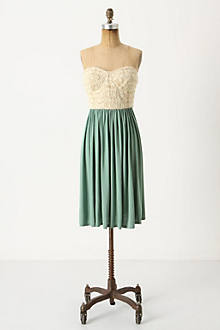 Lace & Light Dress