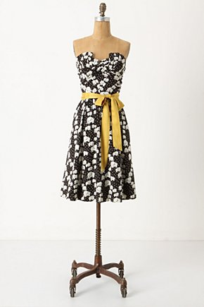 Cirque A-Line - Anthropologie.com :  party frock elephant sash tiered