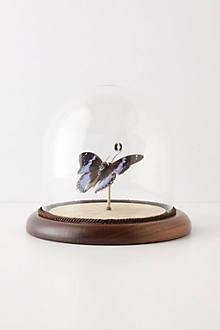Hitherto Butterfly Globe, Blue