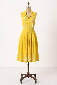 Spiraea Shirtdress