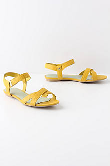 Ruled & Reasoned Sandals