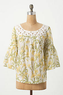 Early Daffodils Top