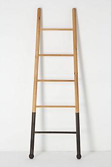 Submergent Ladder