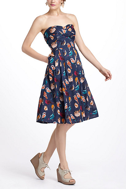 Native Birds Dress