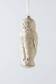 Silverstein Owl