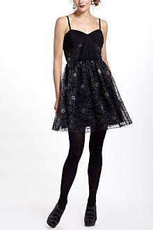 Lace Menagerie Dress