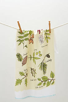 Tree ID Dishtowel