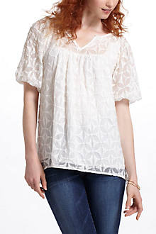 Embroidered Kite Blouse