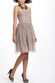 Boston Ivy Dress