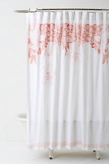 Recoleta Shower Curtain