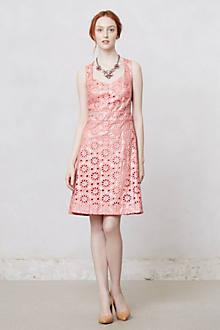 Coralshine Dress