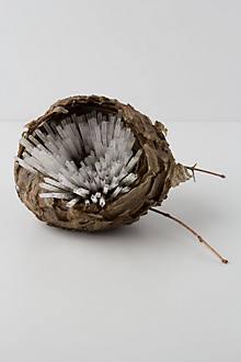 Glass Cane Wasp Nest 1
