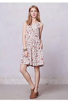 Kanshi Dress