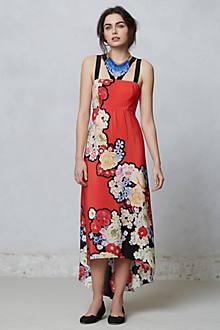 Picolina Maxi Dress