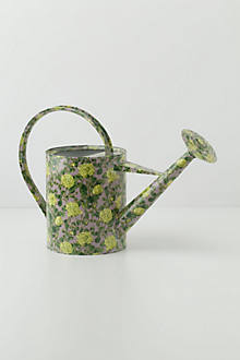 Climbing Roses Watering Can