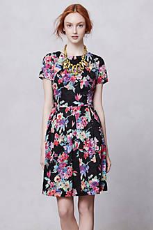 Museum Garden Dress