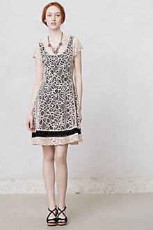 Maitland Lace Dress