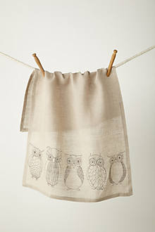 Owl Anatomy Dishtowel