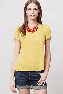 Solid Scalloped Blouse