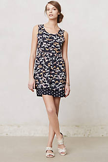 Petaluma Peep Hem Dress