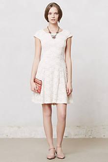 Dayflower Lace Dress
