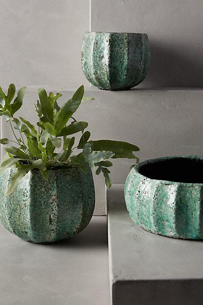 Sale alerts for Anthropologie Celadon Garden Pot - Covvet