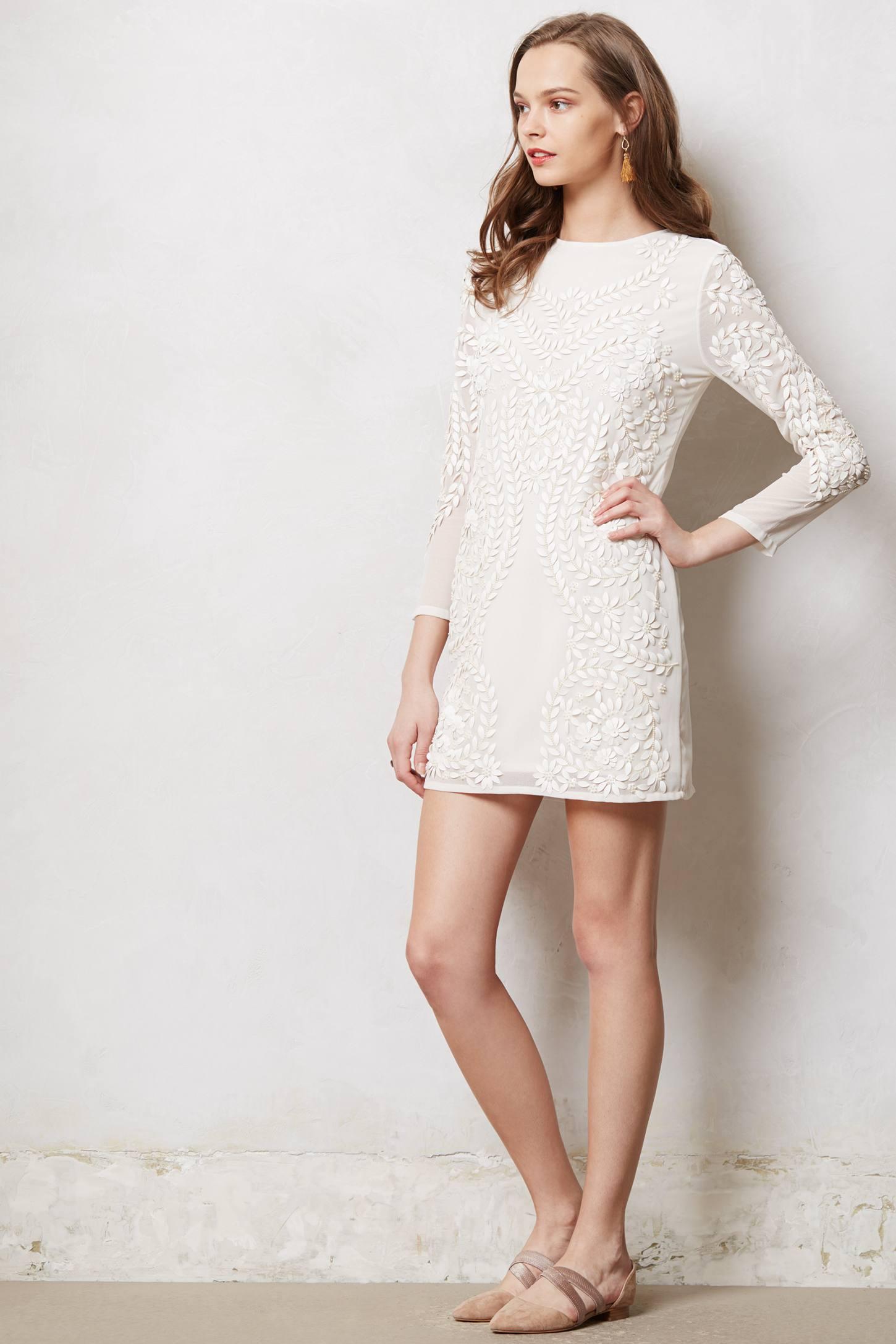 Reviews Ajo Applique Shift Vera Lace Dress Astrid Dress