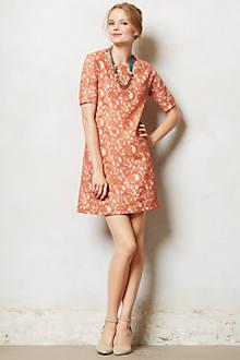 Bellini Lace Shift