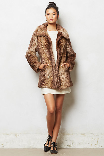Adani Coat