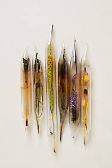 Encased Flowers, Six