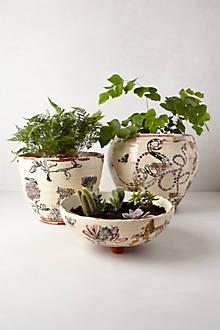 Perpetual Garden Pot