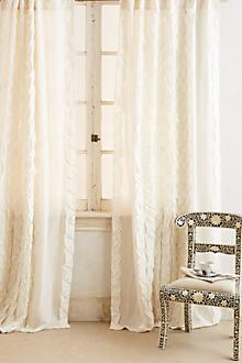 Basal Curtain