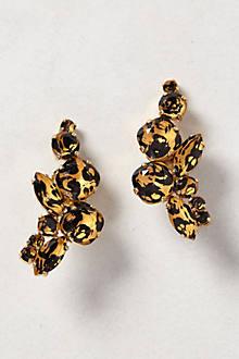 Miocene Earrings
