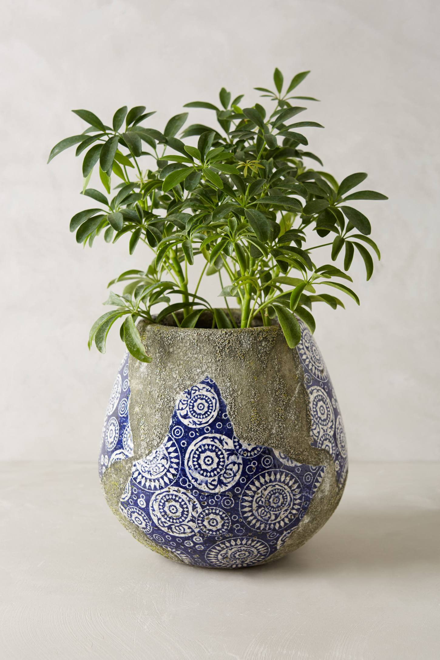 Rustic Prussian Pot