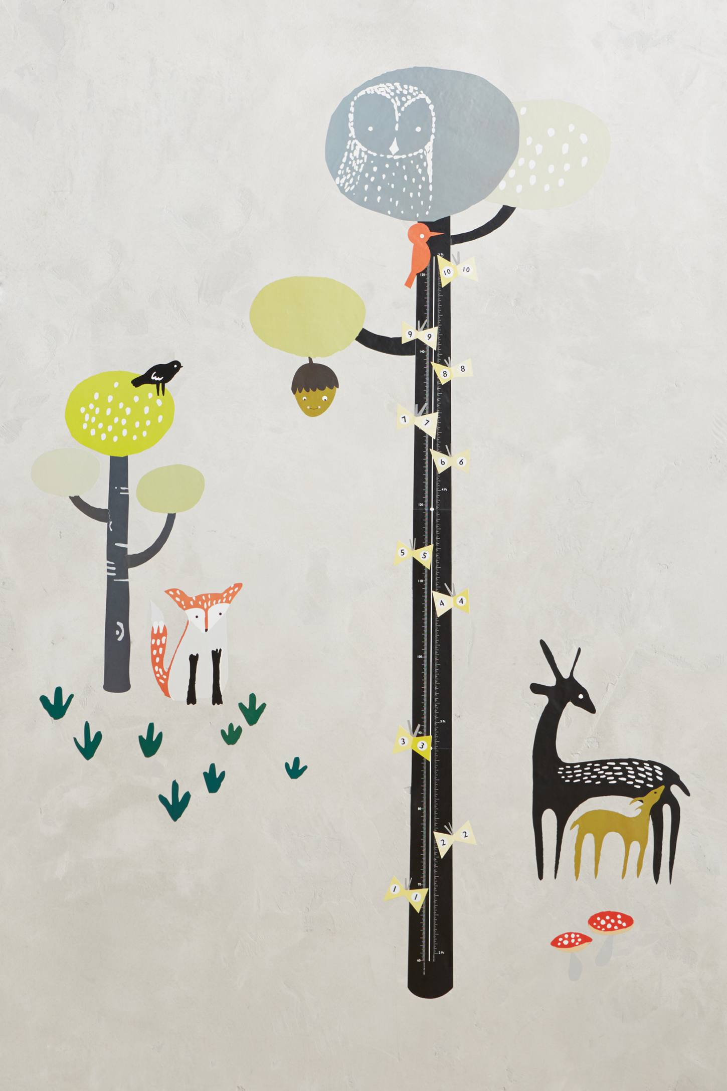 Tall Tree Growth Chart